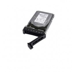 Dell NPOS Disco 2TB 7.2K...